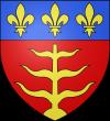 Blason_ville_fr_Montauban_Tarn-et-Garonne-adonis-france.png